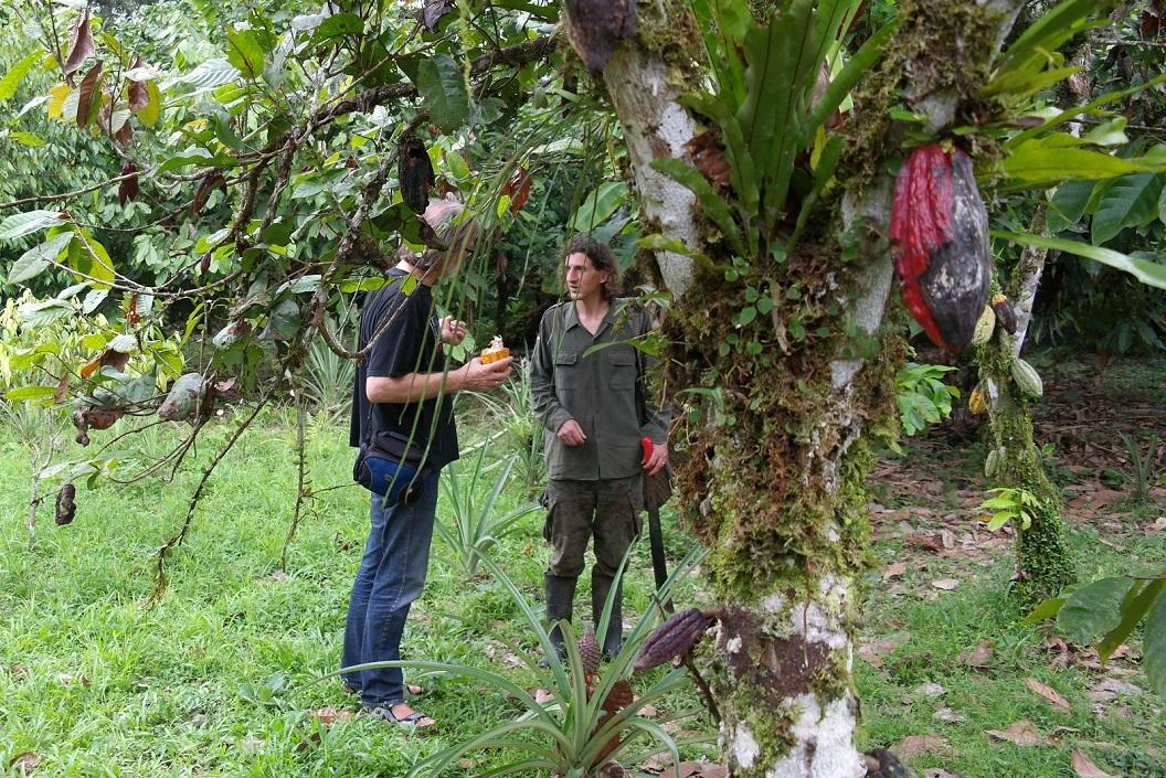 03 Francisco vertelt samen met echtgenote Ana eigenaar te zijn van Cabana Achiyacu Wasi, tuin en Cacaoplantage, dit alles samen opgebouwd