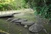 36 het heiligpad op weg naar de Bron van Lavapatas, plaats die als tempel fungeerde