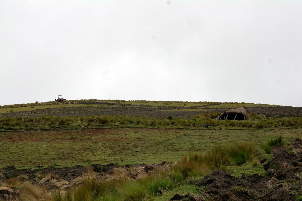 32 op terugweg naar Quito, in de buurt van Tigua richting Pujili, traditionele Chozas (inheemse gras huizen)