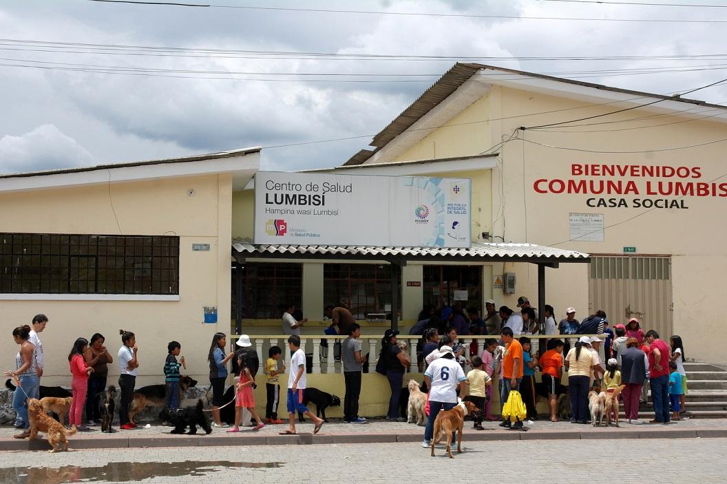 44 in de rij voor vacinatieprogramma voor alle honden en katten van Comuno Lumbisi
