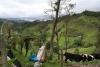 14 zicht op een meer en vruchtbaar landbouw en veeteeld gebied in de Andes, op weg naar San Agustin