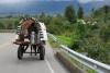 20 verse melk op weg naar huis, de boerderij