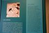 29 een zorgvuldig en uitvoerige expositie met uitleg over de Maya cultuur SAM_0243