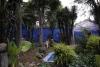 38 de tuin van The Blue House, een oase, voor Frida was huis en tuin de plek waar zij haar energie voor haar leven kon terug vinden en behouden SAM_0655