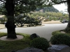 02-the-white-gravel-and-pine-garden