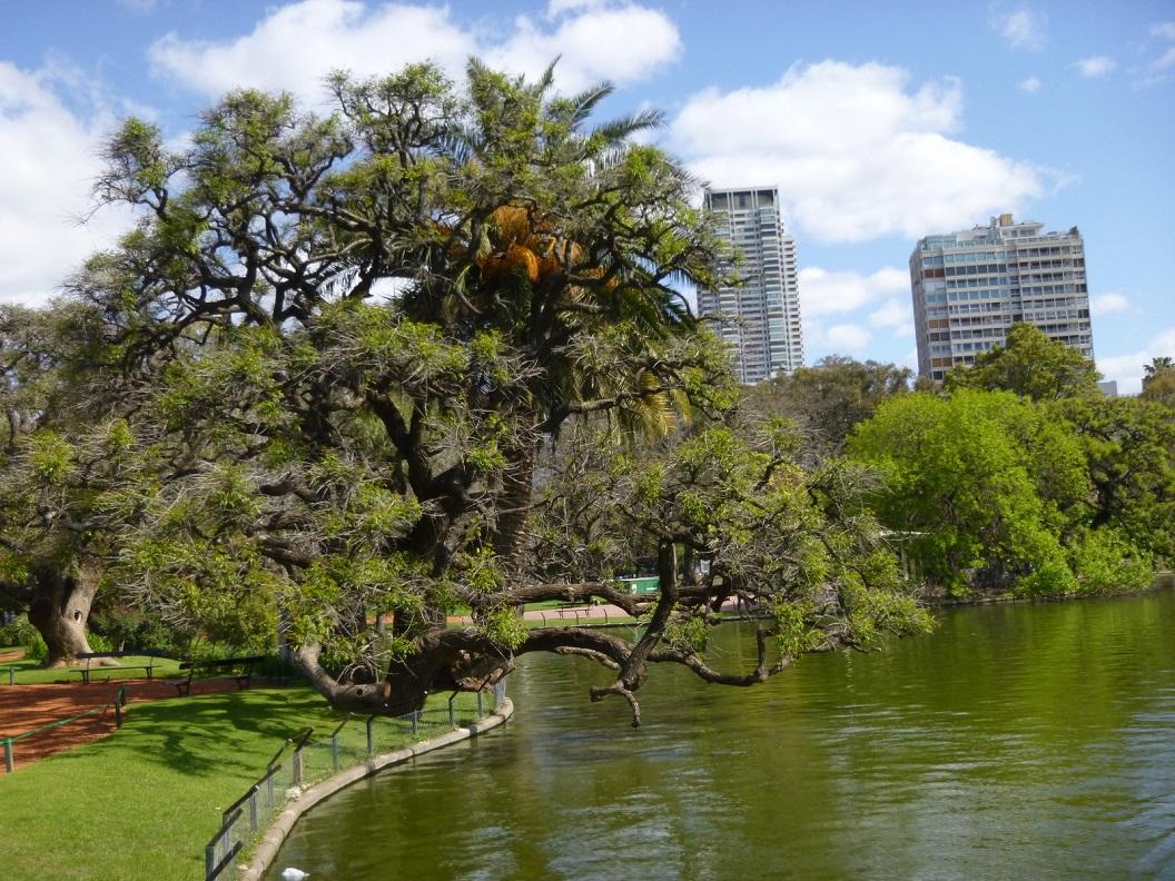 15 Een park met een lange geschiedenis
