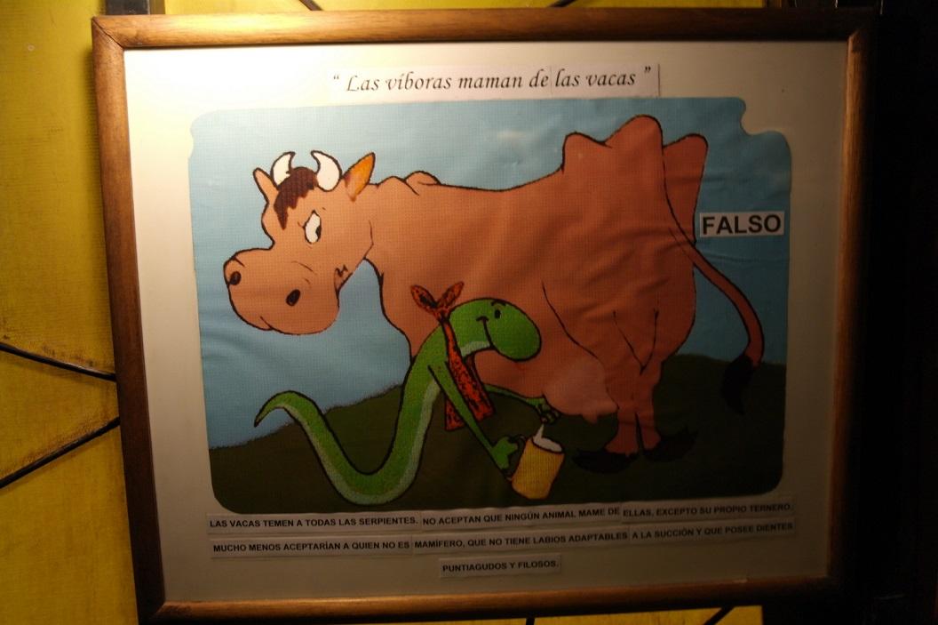 16 Even puzzelen op de vertaling ...Las viboras maman de las vacas