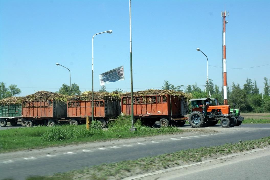 05 Rietsuiker transport