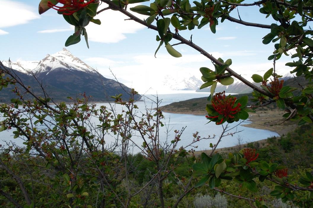06 doorkijkje op Lago Argentino en Glaciar Perito Moreno