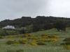 03 Chiloé doet een beetje aan Ierland denken, groen, zachte glooiingen, rijk aan fjorden en bossen en heuvelachtig