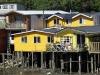 24 hier staan de meest karakteristieke Chilotische Palafitos, huizen met muren en daken van over elkaar aangebrachte houten pannen (tejuelas)