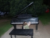 04 Piano aan de rand van het meer, Lago Llanquihue, plezier om even aan te raken