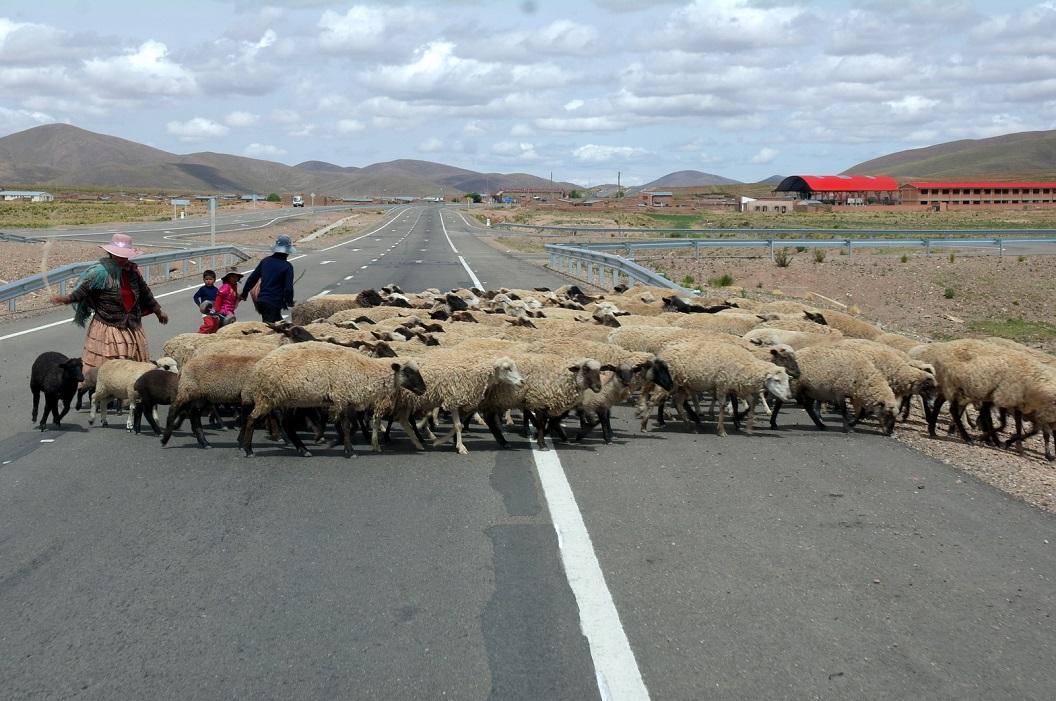 20 vanaf Oruro route 1 een prachtige brede weg 4 baansweg op weg naar La Paz, en op zijn tijd even rustig aan...