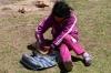 07 tijdens een van de stops door wegwerkzaamheden, geeft een meisje tijdens het lange wachten vol aandacht en geduld haar twee kuikentjes te drinken
