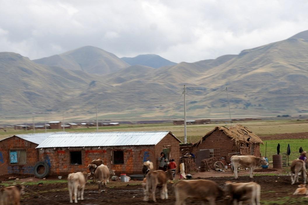 12 platteland - onderweg - van Juliaca naar Cuzco