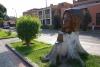 57 rondom het parkje een tweede leven voor de boom bij het Museo Nacional de Arquelogia, Antropologia e Historia del Peru in de wijk Pueblo Libre