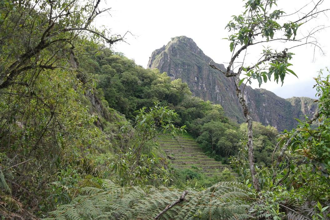 52 nu totaal aan het gezicht onttrokken, verscholen tussen de toppen van de Andes, in een dicht begroeide jungle, ligt de verborgen Incastad Machu Picchu.