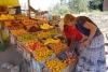 47 als we bijna in Quito zijn kopen we vers fruit voor Leen, Jimena en Danta
