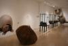 08 hal expositie Pre Colombiaanse Historie - rijk dierenleven en natuur ca 12.000 jr geleden SAM_4730