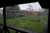 30 dagelijkse regenbui in de namiddag en avond SAM_5299