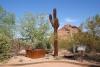 09 20 el hoge Saguaro sculpture - Salvaged Ironwood - behoeden van de oorspronkelijke planten SAM_5584