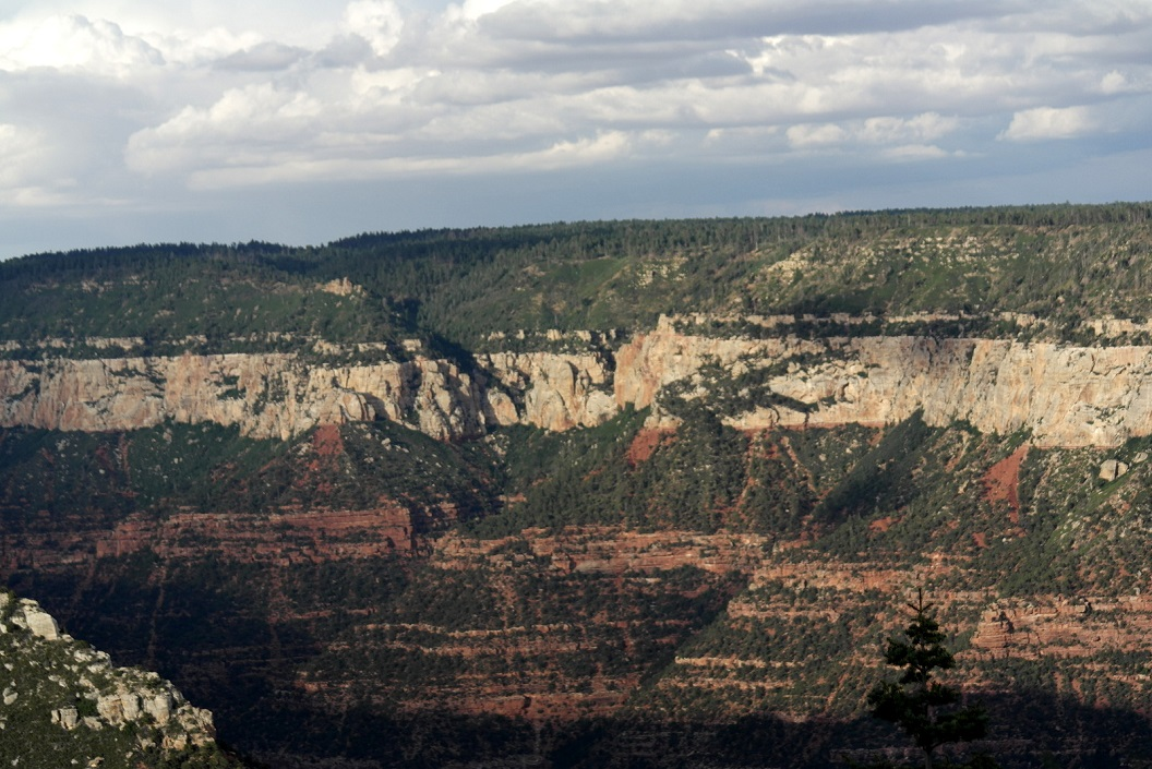 14 Grand Canyon! SAM_3405