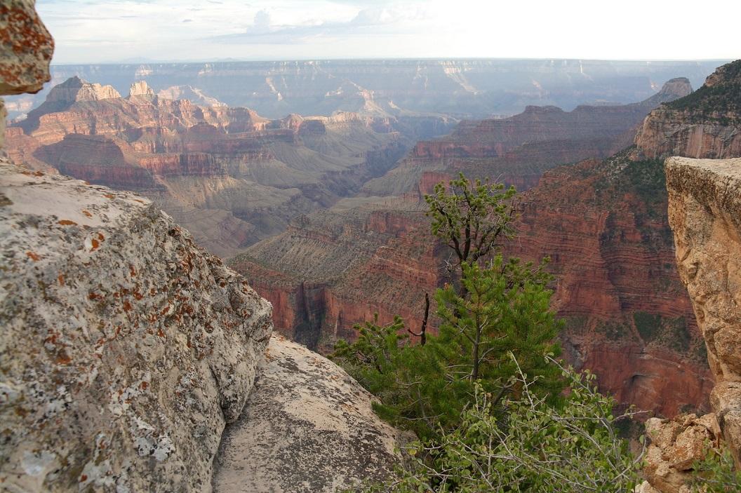 24 Grand Canyon! SAM_6318