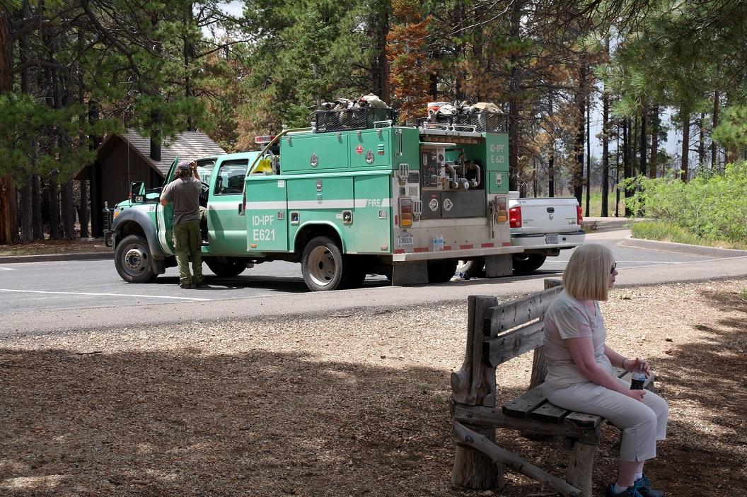 35 voordurende dreiging van bosbranden SAM_6380