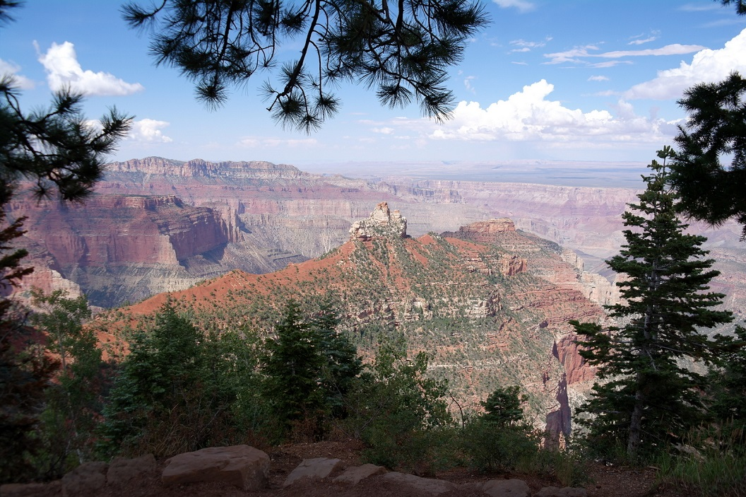 38 Grand Canyon Vista - Highest Viewpoint SAM_6392