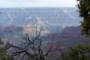 15 Grand Canyon! SAM_3409