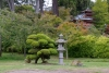 28 in Golden Gate Park van San Francisco - wandeling bij de Japanese Tea Garden SAM_7958