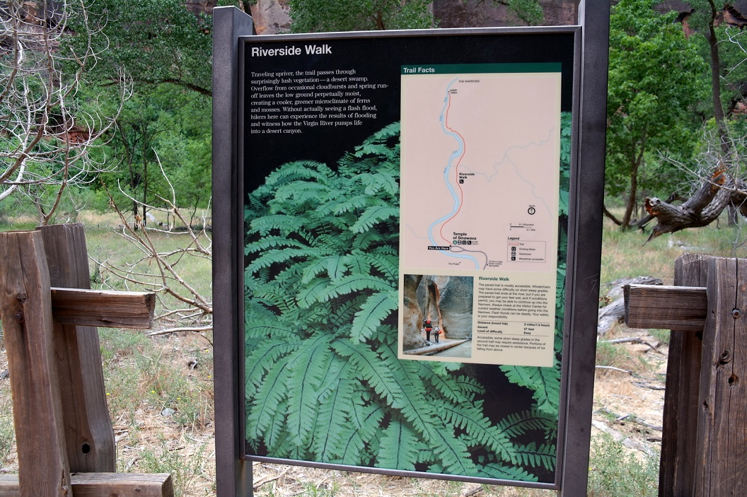 32 Riverside Walk naar Temple of Sinawava SAM_6693