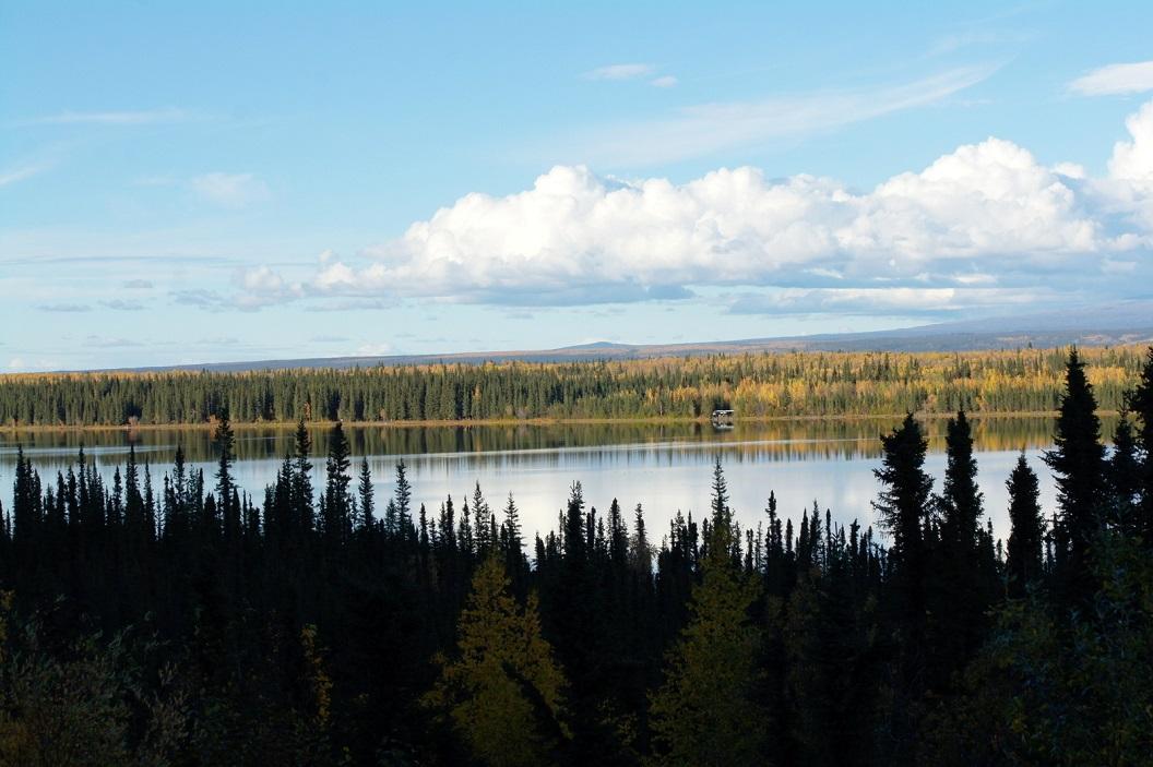 01 Vanuit Valdez via Tok naar Haines - Alaska SAM_1405