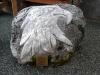 20 Raaf, gehakt uit een rots uit de gebergte rondom Haines, een veel gebruikt en Symbool 20160920_185918