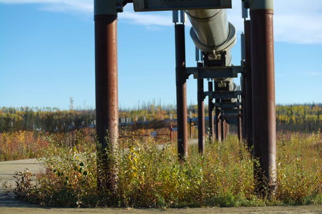 15 78.000 pijlers met gekoelde sokkels werden in de permafrost verankerd om de leiding bovengronds te torsen SAM_1070