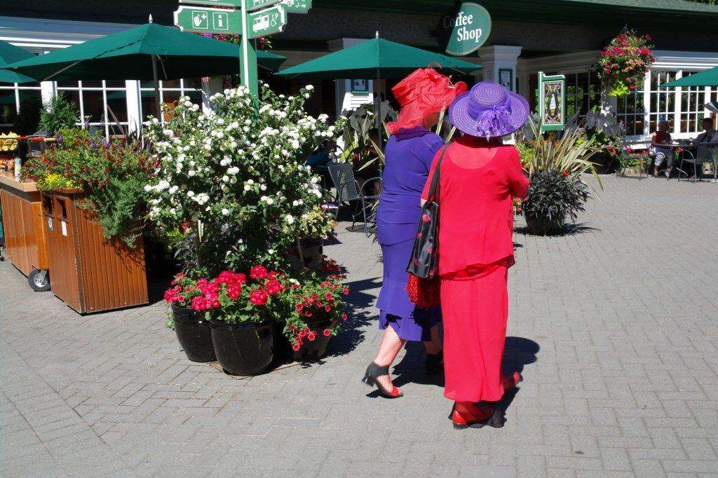 14 Vriendinnen - kleurig afscheid van deze mooie dag SAM_8987