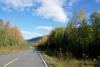 01 begin van de herfst kleuring op route 37 op weg naar Nugget City SAM_0627