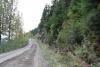 32 op weg naar Salmon Glasier aan het einde van de Glacier Highway SAM_0546