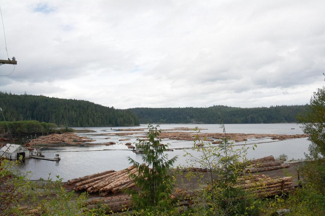 03 houtproductie bij Beaver Cove - Telegraph Cove - Vancouver Island SAM_0104