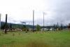 16 bezoek en wandeling door het historische plaatsje Gitanyow - Kitwangoo - Land of the Totems - British Columbia CA SAM_0417