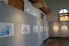 17 tentoonstelling creatief met  plastic tie wraps in een van de bovenzalen Estacion Mapocho