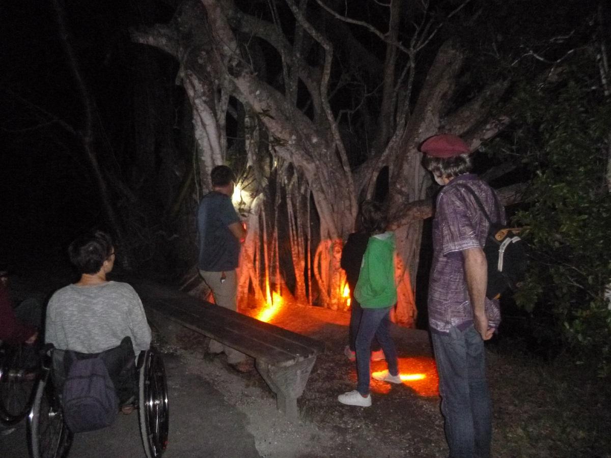 21 avond rondleiding in de Anhina Trail, een rolstoelvriendelijke route