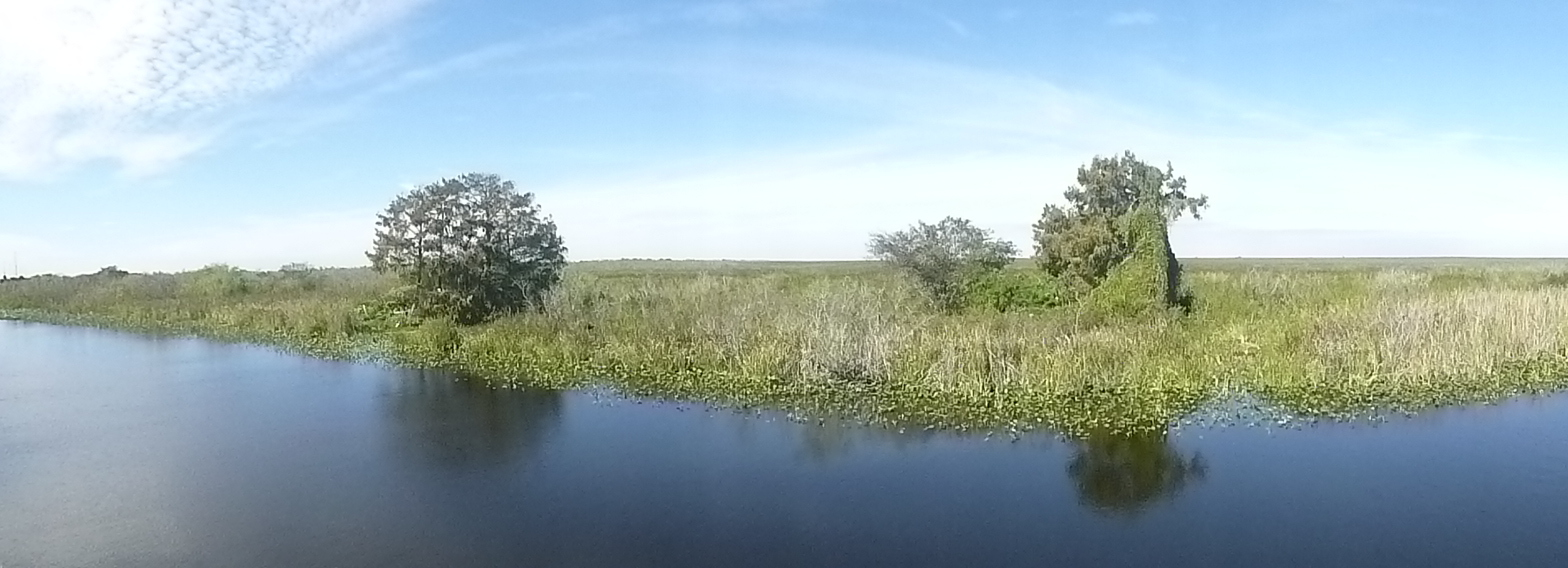 23 panorama Big Cypress