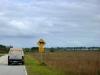 07 Pas op – Next 4 miles – overstekende Panters