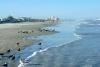 17 het strand van New Smyrna Beach