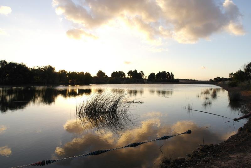 03-waterberging-voor-jim-en-lynnes-huis-en-tuin