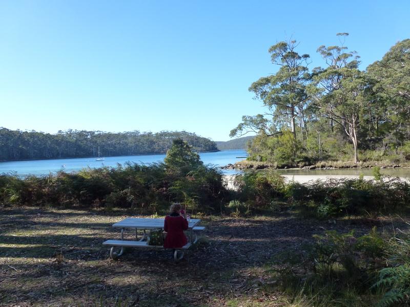 004-picknick-in-bay-state-reserve-nabij-port-arthur