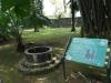 101-kebun-raya-bogorde-meest-vooraanstaande-botanische-tuin-van-indonesie-java