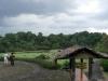104-de-plantentuin-werd-in-1949-omgedoopt-tot-kebun-raya-bogor