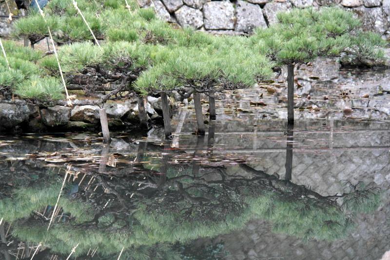 07-spiegeling-in-de-vijver